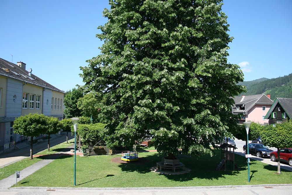Gemeindevorplatz3